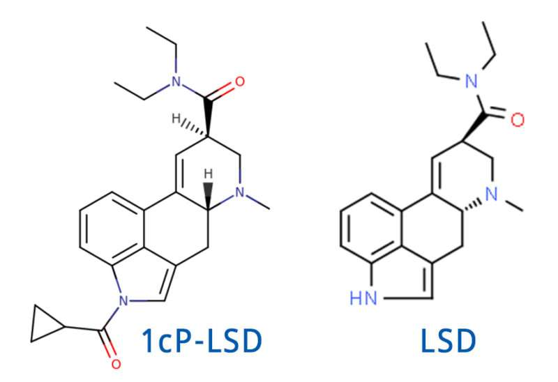 microdosing 1p-lsd & 1cp-lsd