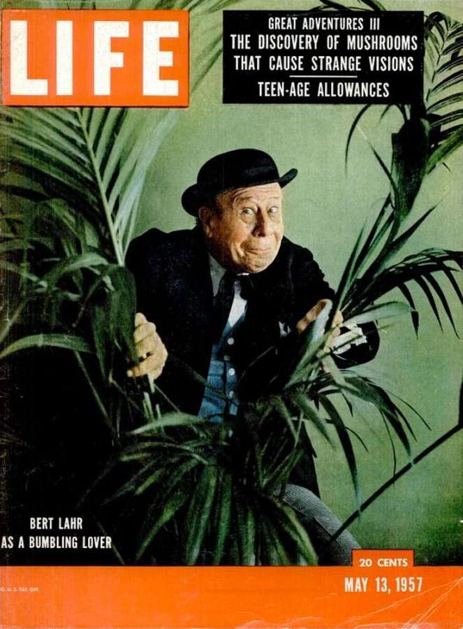 Life Magazine over paddo's