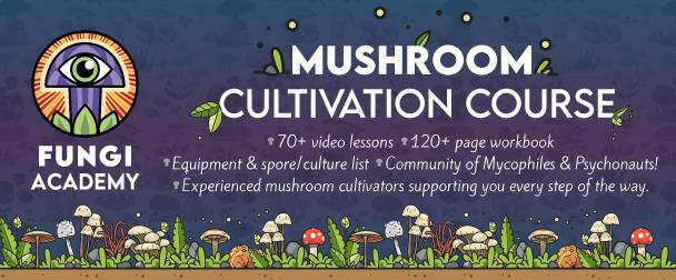 Fungi Academy mushroom cultivation course description